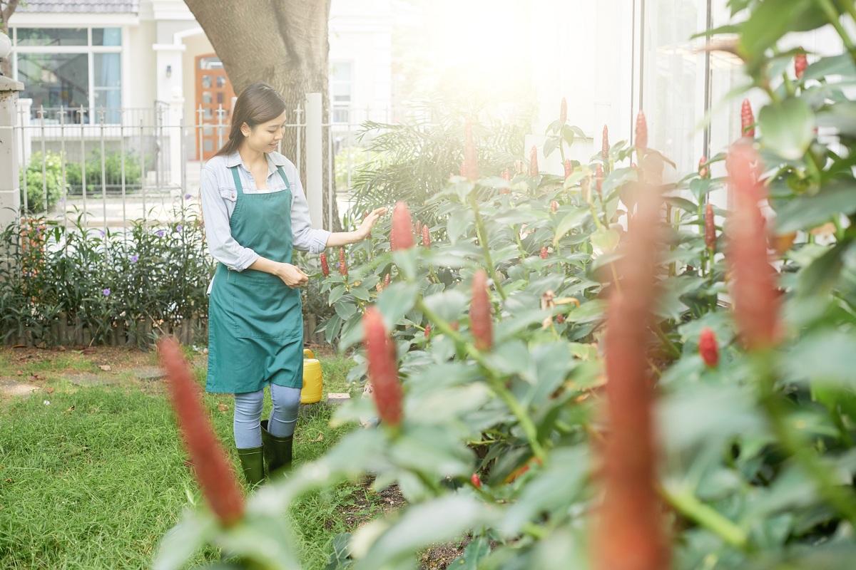 Young farmer in the garden